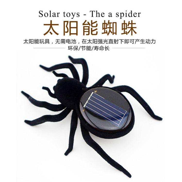 恶搞创意益智教学 太阳能蚂蚱蜘蛛蟑螂汽车小强蚱蜢趣味礼品玩具