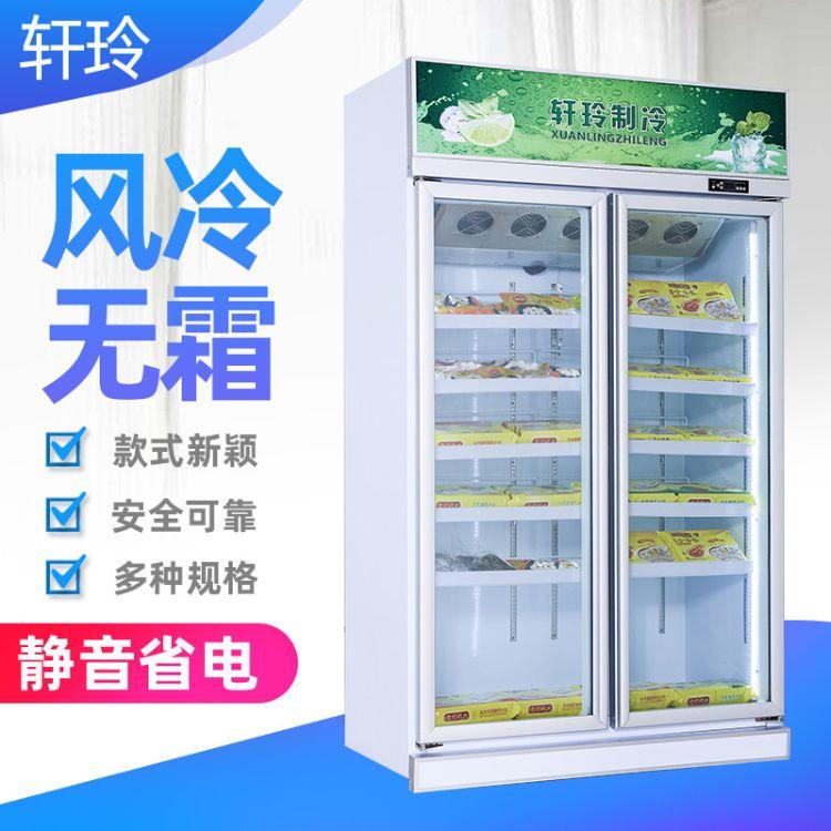 两门冷冻柜 饮料冷藏展示柜超市商用冰箱啤酒冷柜 立式冰柜定制