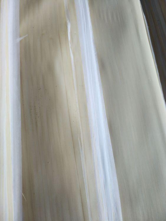 纯白黄杨无纺布包覆皮30丝木皮