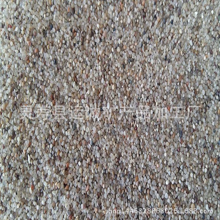 海沙优质海沙精选海沙白沙子建筑海沙河沙