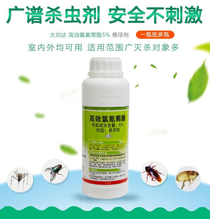 大型高效氯氟氰菊酯2.5%杀虫大量供应战虫卫士的批发 大型灭蚊子药批发苍蝇药