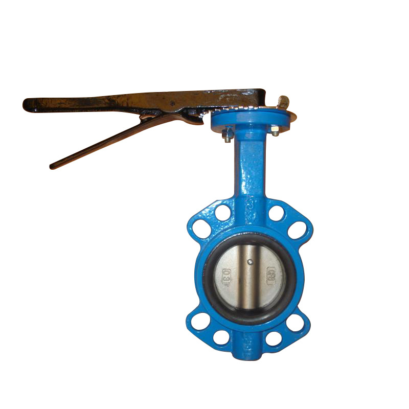 供應鑄鐵電動對夾蝶閥 氣動通風蝶閥 源水閥門生產廠家直供