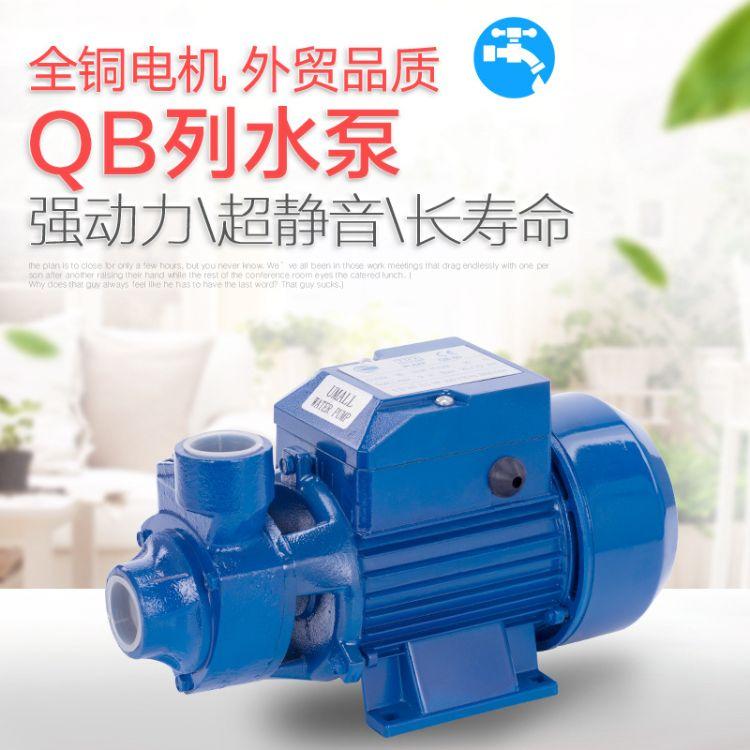 QB60 小型闽东清水泵110V 220V 家用和园林清水漩涡泵 家用泵