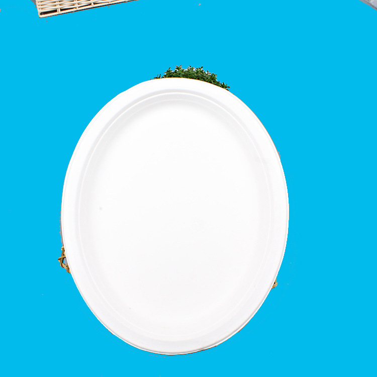 一次性便携式野外用餐具九寸烧烤盘纸盘