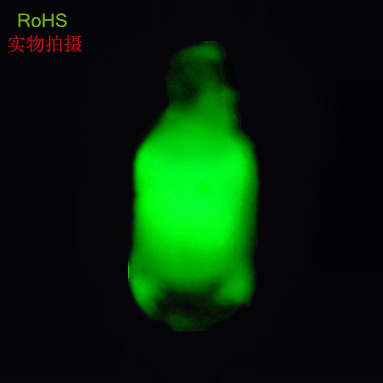 新款上市4* 5* 高亮度 绿色 红色  荧光氖泡照明工业气体放电灯