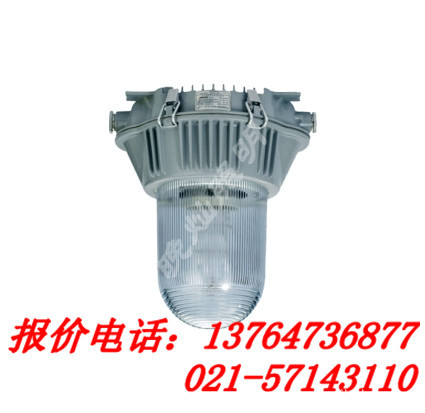 防眩灯 NFC9180/NFC9181 电站灯,防眩泛光灯,上海厂家直销