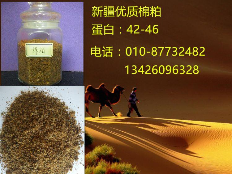供应新疆优质棉粕42蛋白含量产地直发