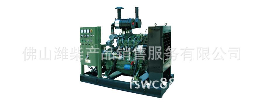 generator set潍柴天然气发电机组WPG41B9NG