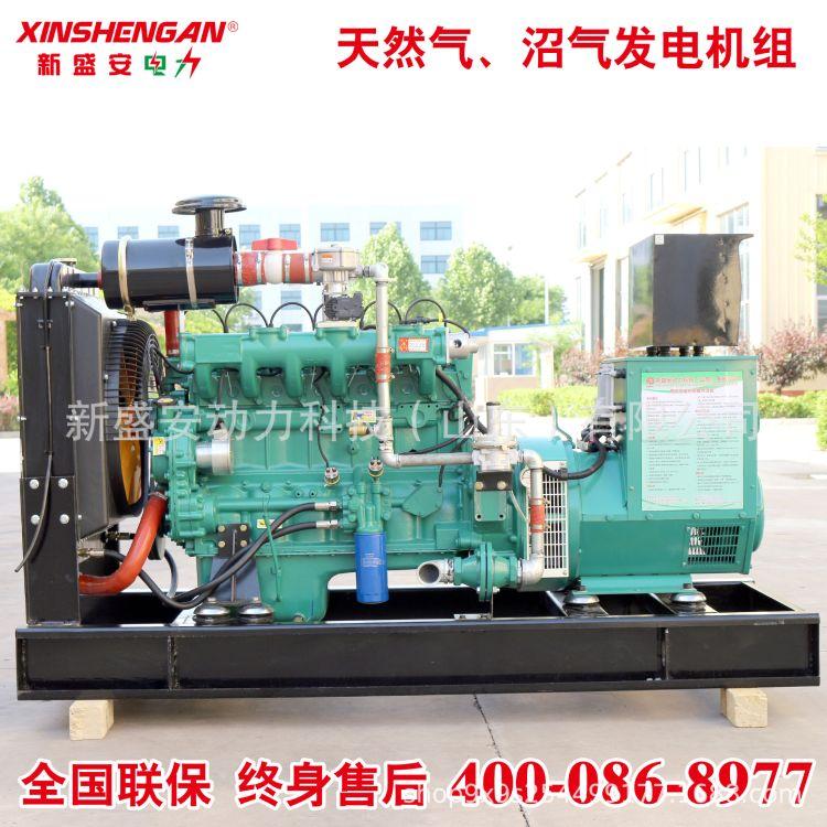 40kW 燃气发电机组 天然气 沼气 发电机 潍坊 发电机组 绿色环保
