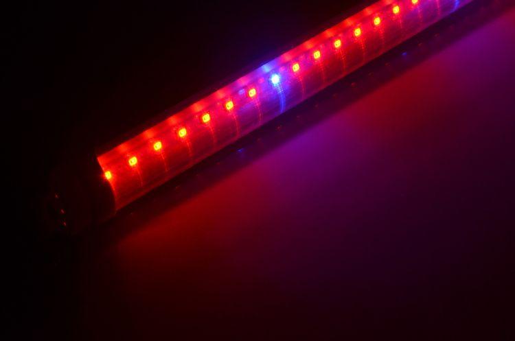 植物灯管led 60cm 90cm 120cm植物工厂专用全光谱生菜补光生长灯