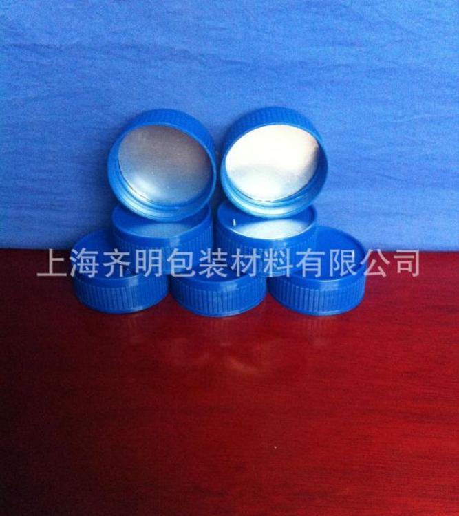 上海厂家直销塑料盖子 款:QM-BL-0101