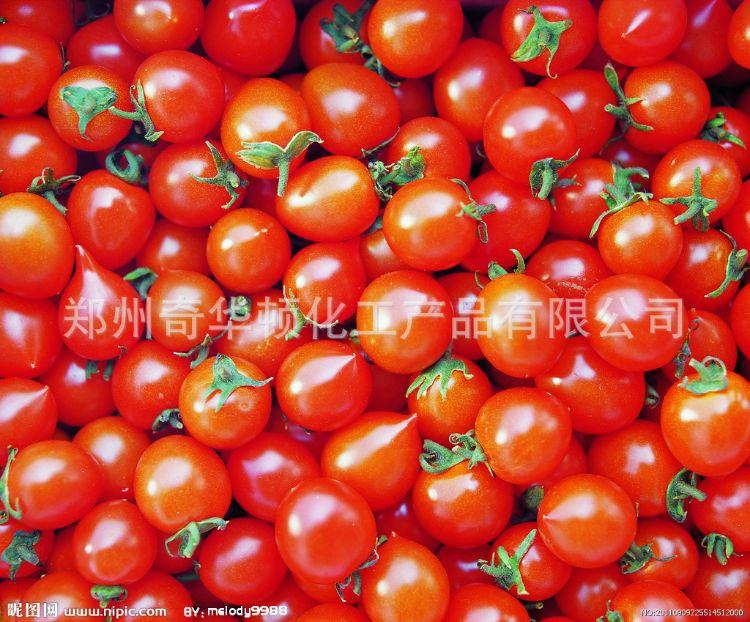 食品着色剂抗氧化剂番茄红素 番茄提取物食品级番茄红素