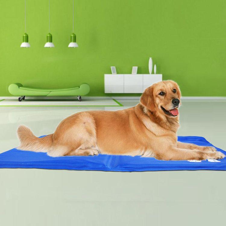 厂家直供宠物降温冰垫 多功能冰垫 优质冰晶坐垫 夏季热卖产品