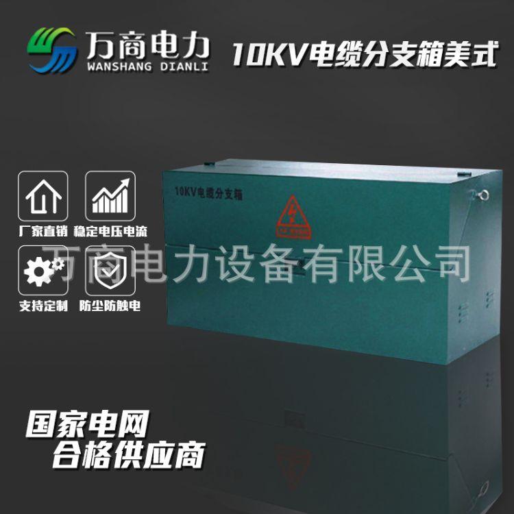 万商电力 10KV电缆分支箱美式 一进二出 DFW-12/200A不锈钢壳体带避雷器