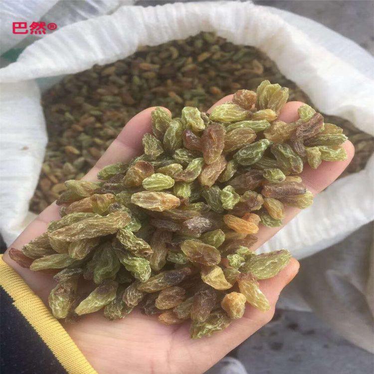 新疆特产无核白葡萄干特级绿葡萄干黑加仑散装整箱食品展会年货