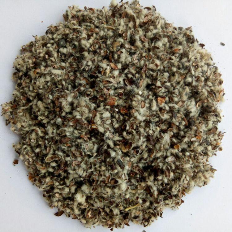 厂家棉子壳 长绒棉籽壳蘑菇大棚专用壳棉籽