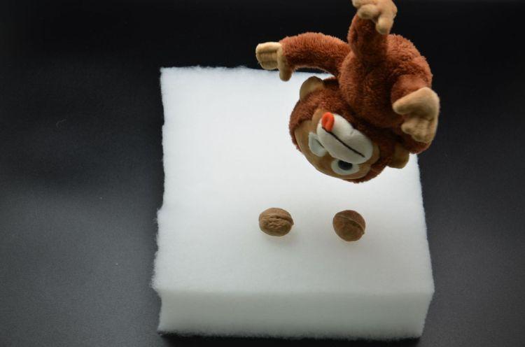 莲茂 胸围棉用直立棉