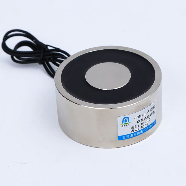 厂家供应 CNMYE1-P65/30 直流吸盘式电磁铁 起重 电磁吸铁