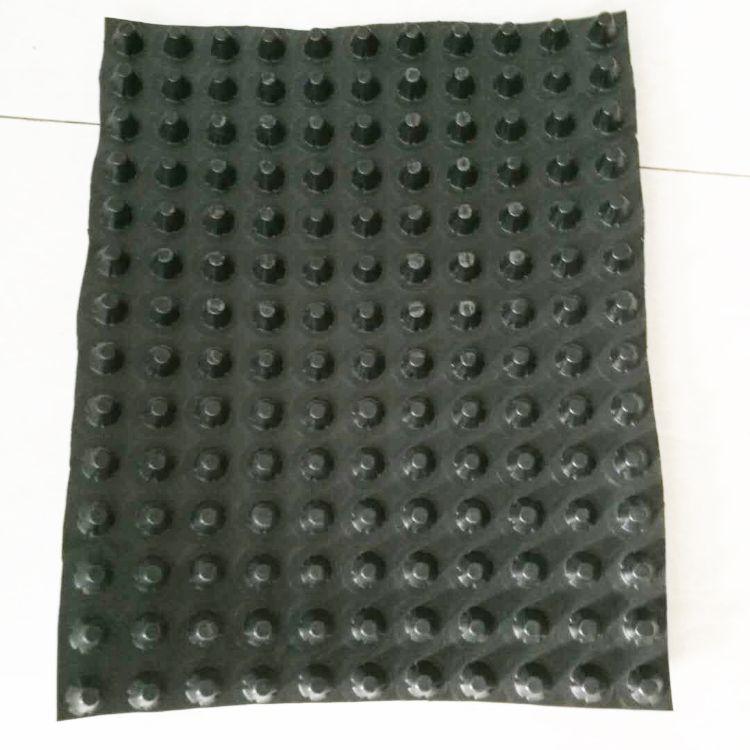 优质排水板 蓄水板 花园排水板 防渗漏排水板