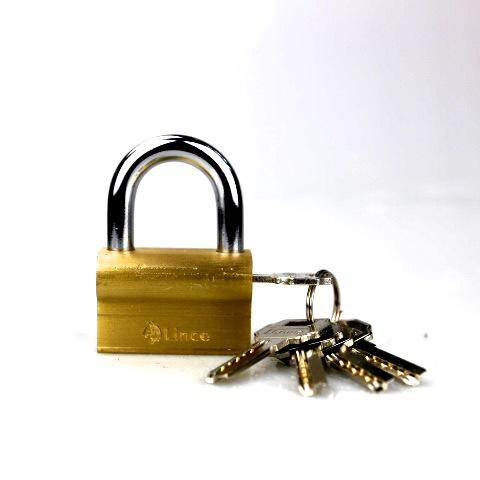 浦江铁力锁厂供应骆驼铜锁 骆驼型铜挂锁55mm