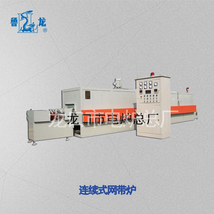 鲁龙专业生产连续式网带加热炉