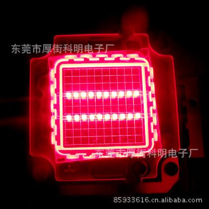 LED大功率20W红色42*42晶片排列10串2并 厂家生产