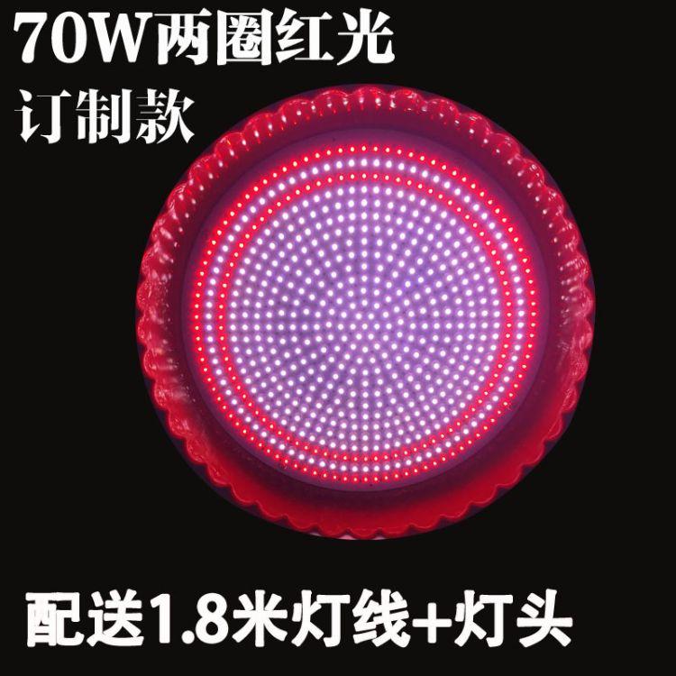 太一led猪肉灯生鲜灯熟食灯30W70W订制款冰鲜灯市场灯70瓦亮螺口