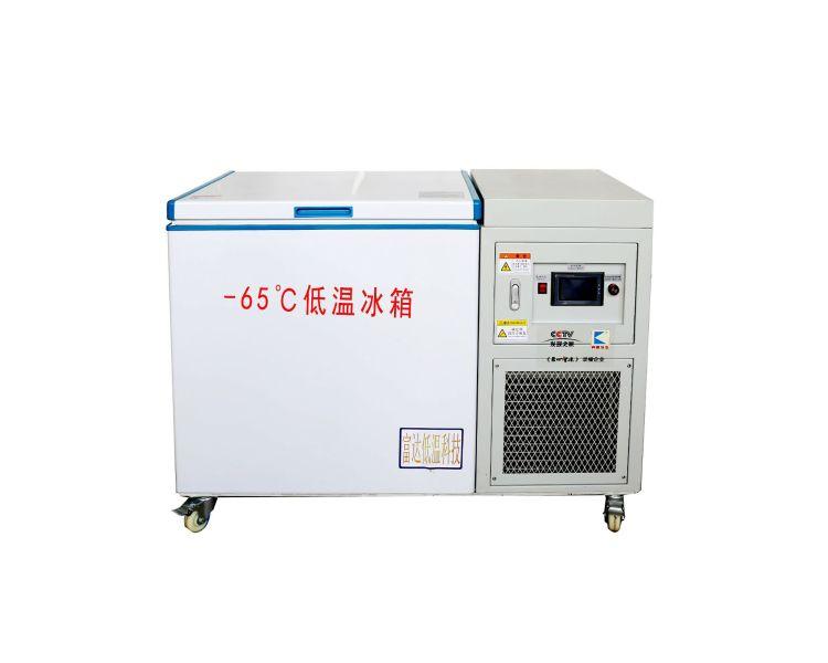 奔康冷冻 BKDB-200L-65℃低温冷冻冷藏冰箱 低温冰箱