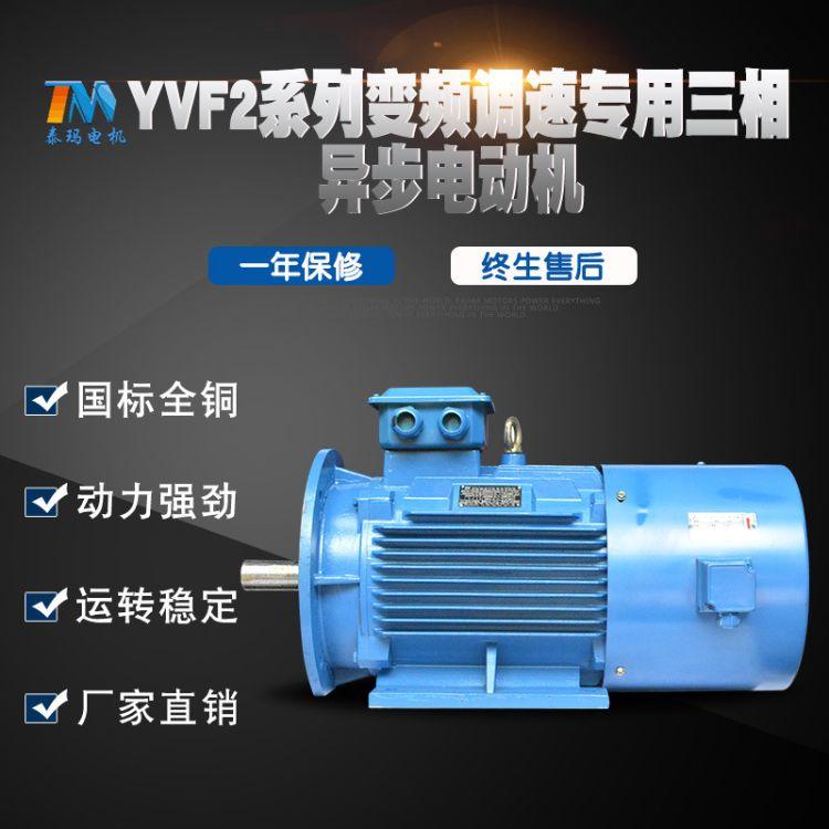 【泰玛】YVF2变频调速三相异步电动机 厂家直销