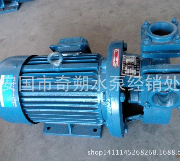 优质B32W2-105型单级离心泵旋涡泵 小流量清水泵 旋涡泵生产厂家