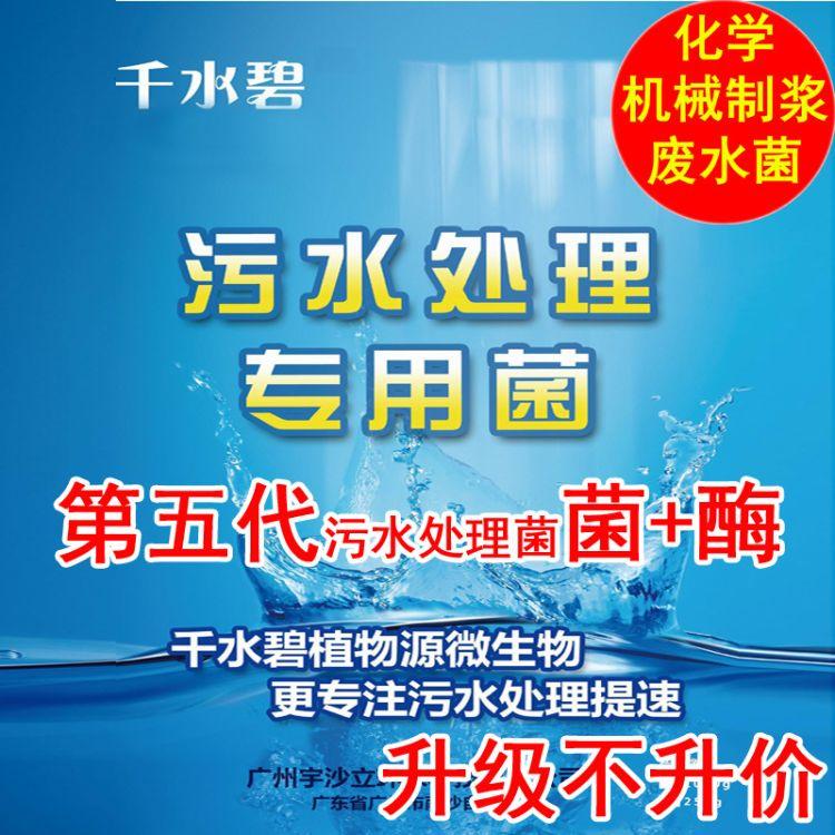 千水碧化学机械制浆污水处理菌剂 第五代 造纸废水处理菌剂 废水1000g