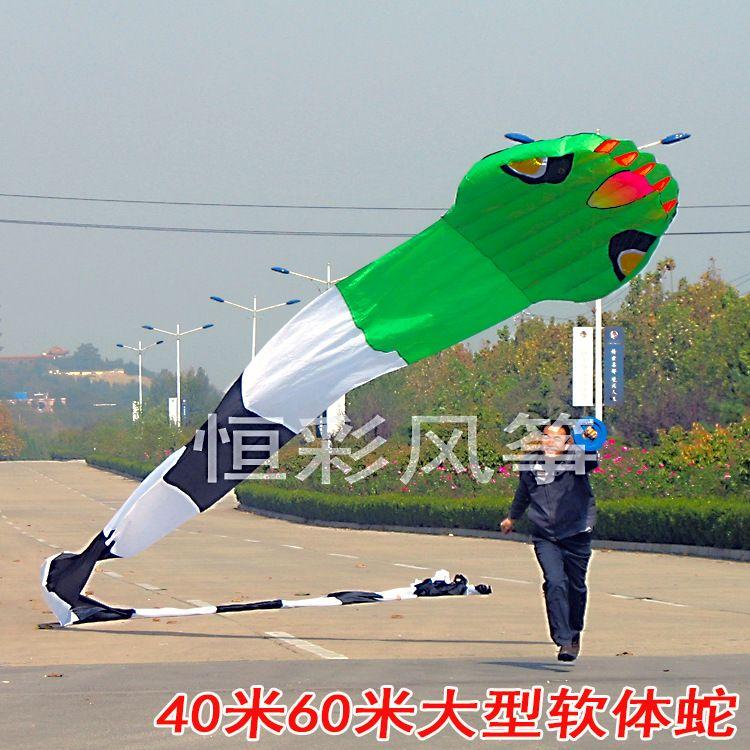 潍坊风筝成人大型软体风筝40米60米软体蛇风筝正品