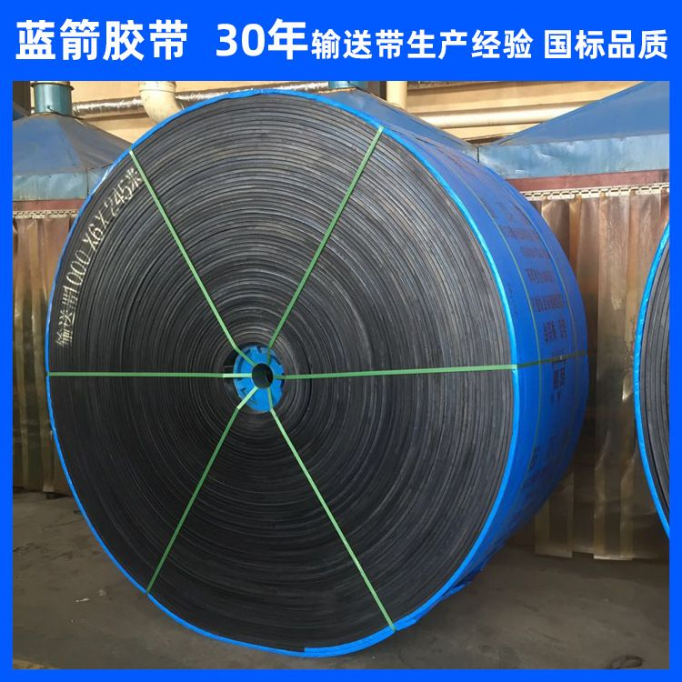 输送带厂家河北蓝箭销售600mm宽耐热耐酸碱耐磨橡胶尼龙输送带