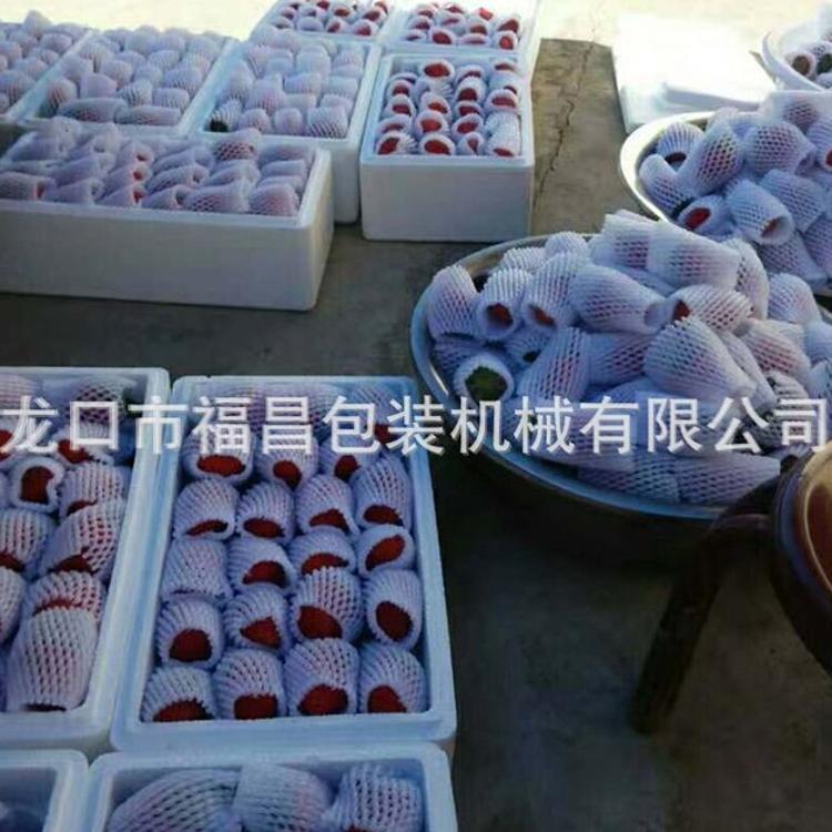 东港草莓网套机发泡网设备安徽草莓网套机福昌机械13791284281