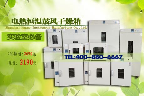 工业烘箱热风循环小型烘箱 内胆尺寸300-300-270mm