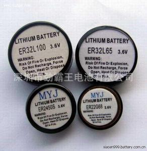 劲霸王轮胎压力检测系统ER32L065.1/10D锂亚电池