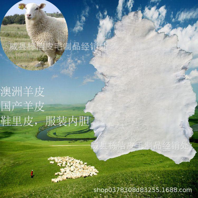 澳洲鞋里服装绵羊皮厂家直销新西兰国产白色