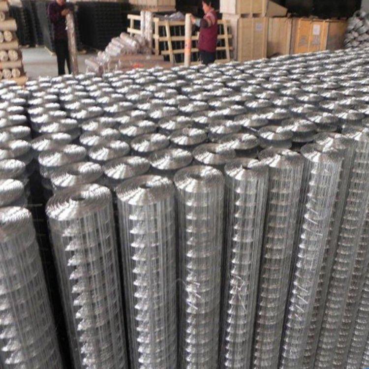 镀锌电焊网片-不锈钢电焊网片