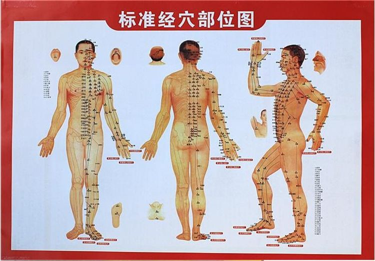 厂家按需批发艾灸人体经络图挂图 施灸参考双面艾灸盒穴位图