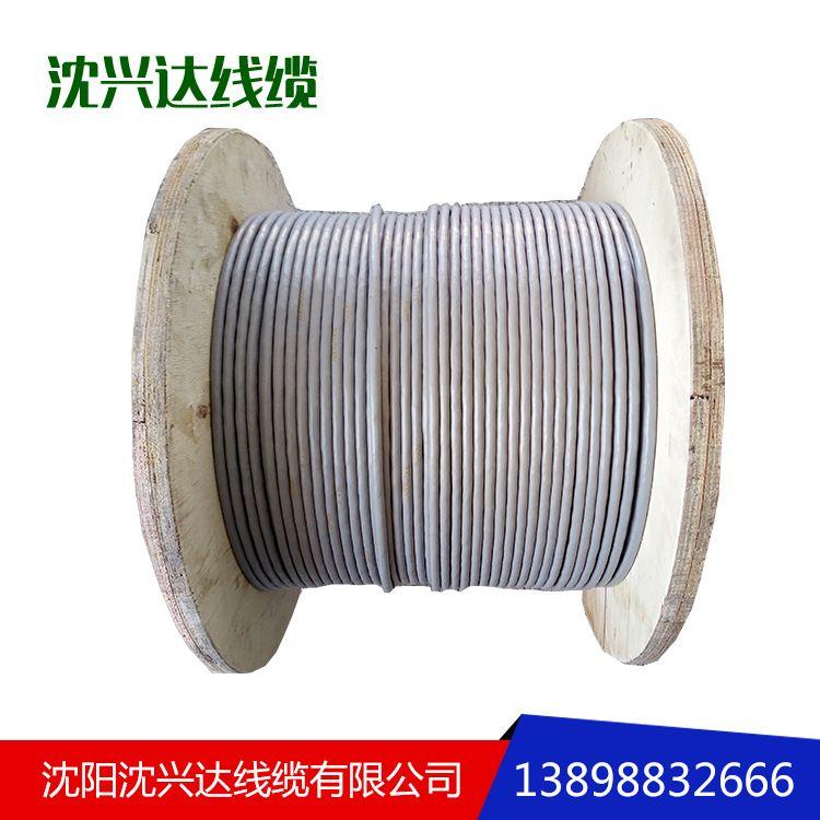 RS485通讯电缆仪器仪表电缆聚乙烯护套铜线电线电缆厂家直销