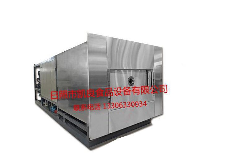 供应 冻干机 蔬菜粉真空冷冻冻干机 节能型冻干机 冻干代加工